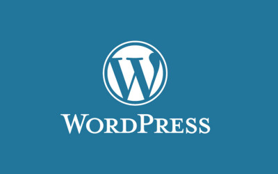 Pros and Cons of WordPress for Your Website